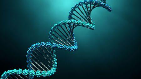 共振:科學發現人體提升自身免疫力的奧妙